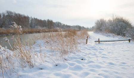 Snowy countryside in sunlight photo