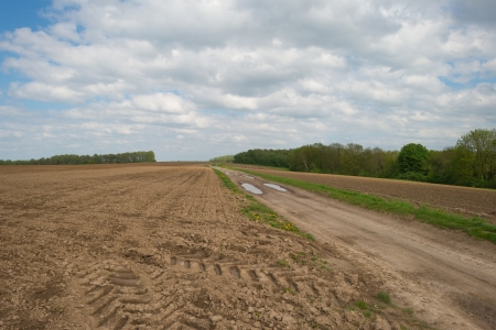 furrows: Furrows in a hilly field in spring