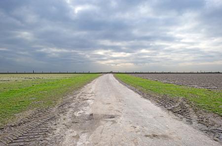 dike: Countryside road towards a dike in winter Stock Photo