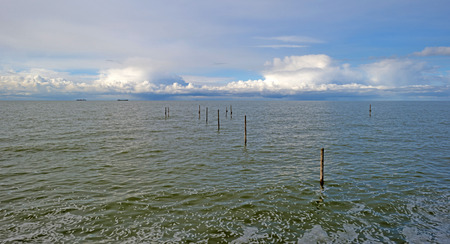 markermeer: Barge sailing on the horizon of a lake in spring