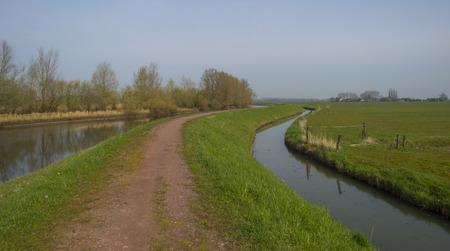 meanders: Dike meanders through a river in spring