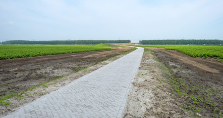 Bicycle road under construction in summer photo