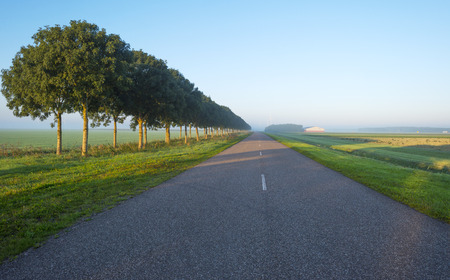 Road through the countryside at sunrise  in summer photo