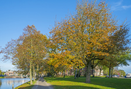 leeuwarden: Walking in a sunny park in autumn