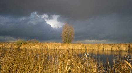 Deteriorating weather over the shore of a river at fall photo