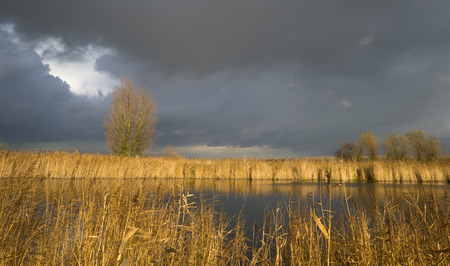 deteriorating: Deteriorating weather over the shore of a river at fall Stock Photo