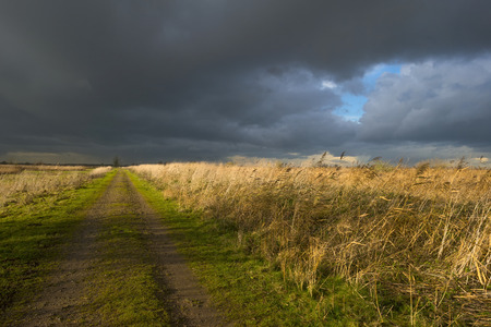 deteriorating: Deteriorating weather over a footpath along reed at fall