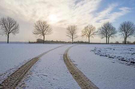 huellas de neumaticos: Pistas de neum�ticos en la nieve