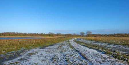 ���clear sky���: Snowy footpath in a marsh under a clear sky