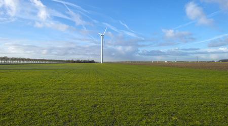 flevoland: Wind turbine in a meadow