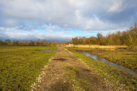 deteriorating: Deteriorating weather over nature in winter