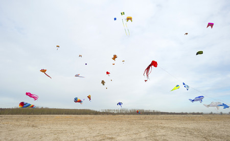 kiting: Colorful kites flying in a cloudy sky