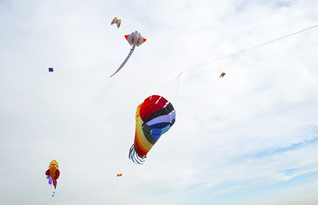 flevoland: Colorful kites flying in a cloudy sky