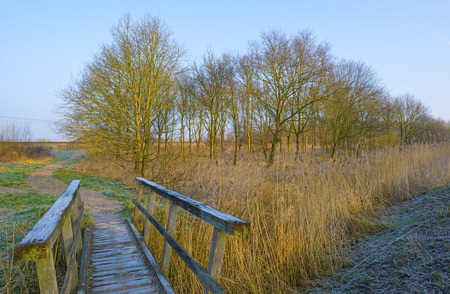wooden bridge: Wooden bridge near a forest in winter Stock Photo