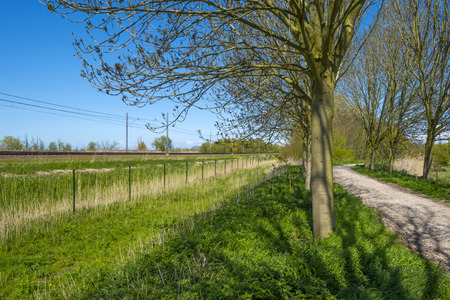 dirt road recreation: Footpath along a railway and sunny trees in spring Stock Photo