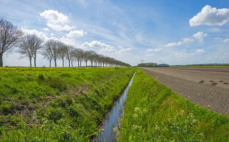 plowed field: Country road  along a plowed field in spring