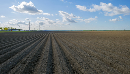 plowed field: Plowed field with furrows in spring Stock Photo