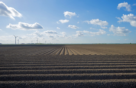 furrow: Plowed field with furrows in spring Stock Photo