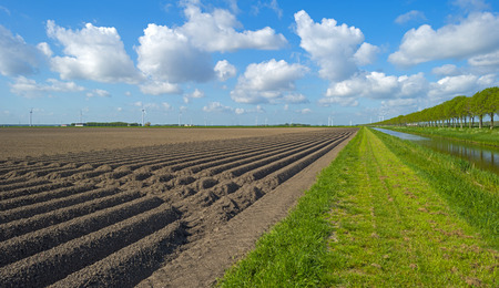 plowed field: Canal along a plowed field with furrows in spring