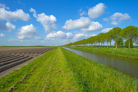 furrows: Canal along a plowed field with furrows in spring