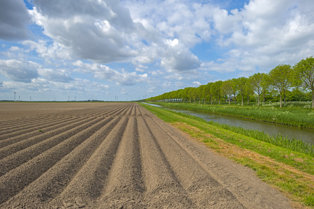 furrows: Plowed field with furrows in sunlight in spring Stock Photo