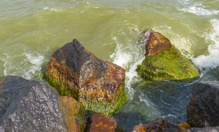 markermeer: Rocks along the coast or a sea in spring Stock Photo