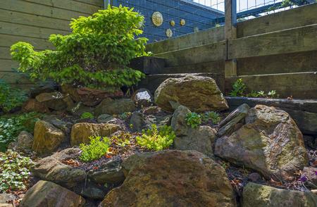 rockery: Garden rockery in sunlight in summer Stock Photo