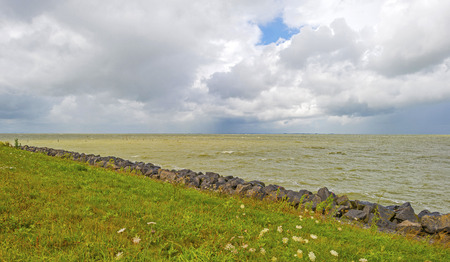 markermeer: Dike along the shore of a lake in summer