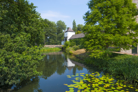 waterlillies: Building along the shore of a lake in summer Stock Photo