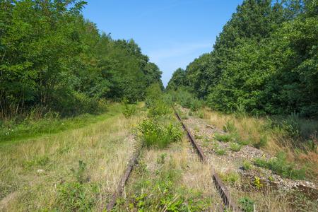 derelict: Derelict railway through a forest in summer Stock Photo