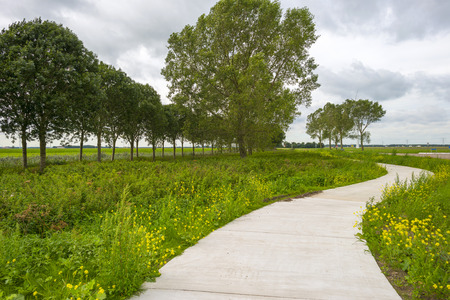 meandering: Bicycle path meandering through the countryside Stock Photo