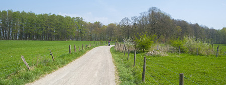 dirt: Dirt road through sunny farmland in spring