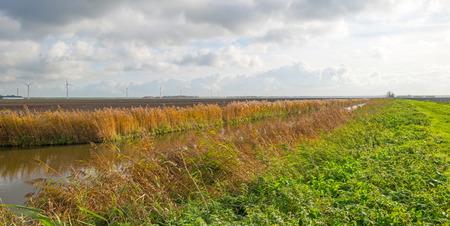 flevoland: Canal through a rural landscape in autumn