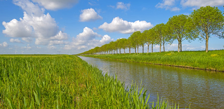 meandering: Canal meandering through the countryside in spring Stock Photo