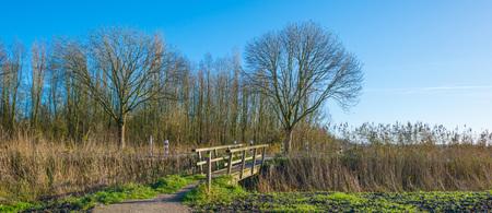 wooden bridge: Wooden bridge in nature in autumn Stock Photo
