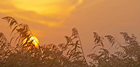 winter sunrise: Sunrise drove over in winter Stock Photo