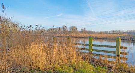 bollards: Bollards along the shore of a canal Stock Photo