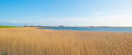 lelystad: Shore of a lake below a blue cloudy sky in winter Stock Photo