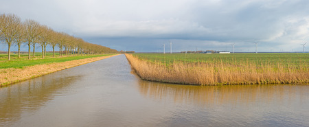 flevoland: Canal through a sunny landscape in winter Stock Photo