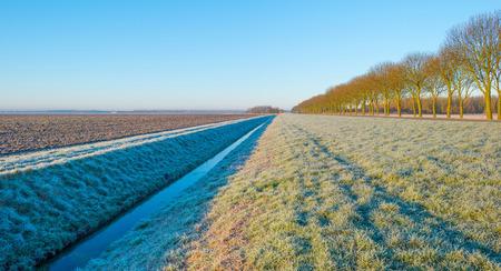 flevoland: Plowed field at sunrise in winter