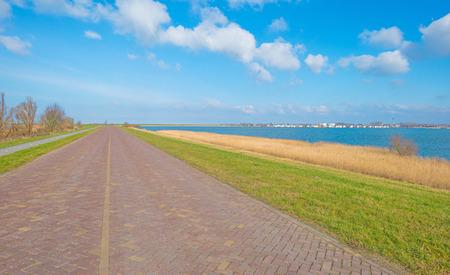 lelystad: Shore of a lake in sunlight in winter