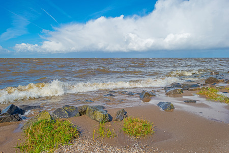 stormy sea: Beach along a stormy sea in spring
