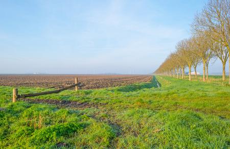 plowed: Plowed field at sunrise in spring