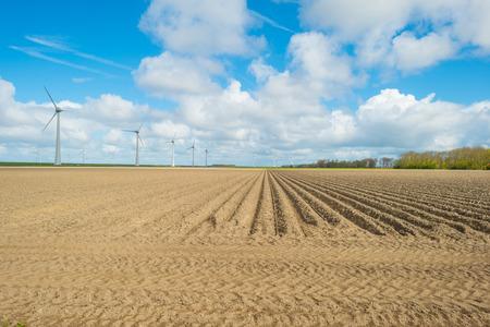 plowed: Plowed field in spring