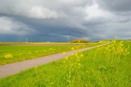 deteriorating: Road in deteriorating weather