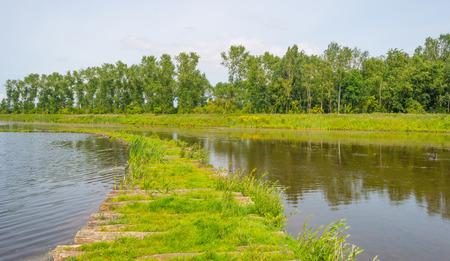 Corduroy road through a lake in summer