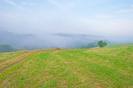 hilly: Fog in a hilly landscape at sunset Stock Photo