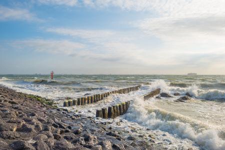 stormy sea: Coast along a stormy sea in summer