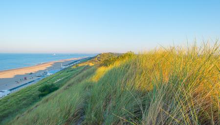 Dunes in the light of sunrise in summer