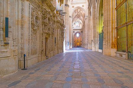 salamanca: Detail of the medieval cathedral of Salamanca